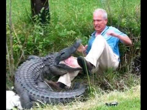 [SHOCKING] Video Shows Crocodile Almost Kills Man - Enchos.com